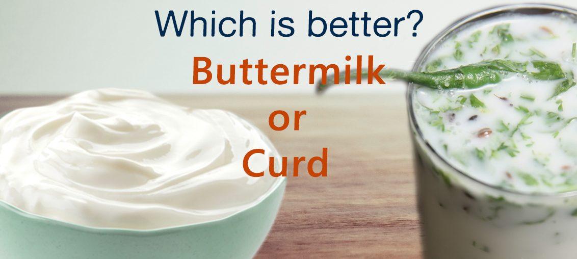 Is Curd Better - Butter Milk Better than on MilkandMore.Com