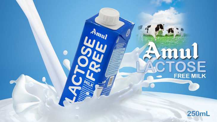 Amul - Lactose Free milk 250 ml